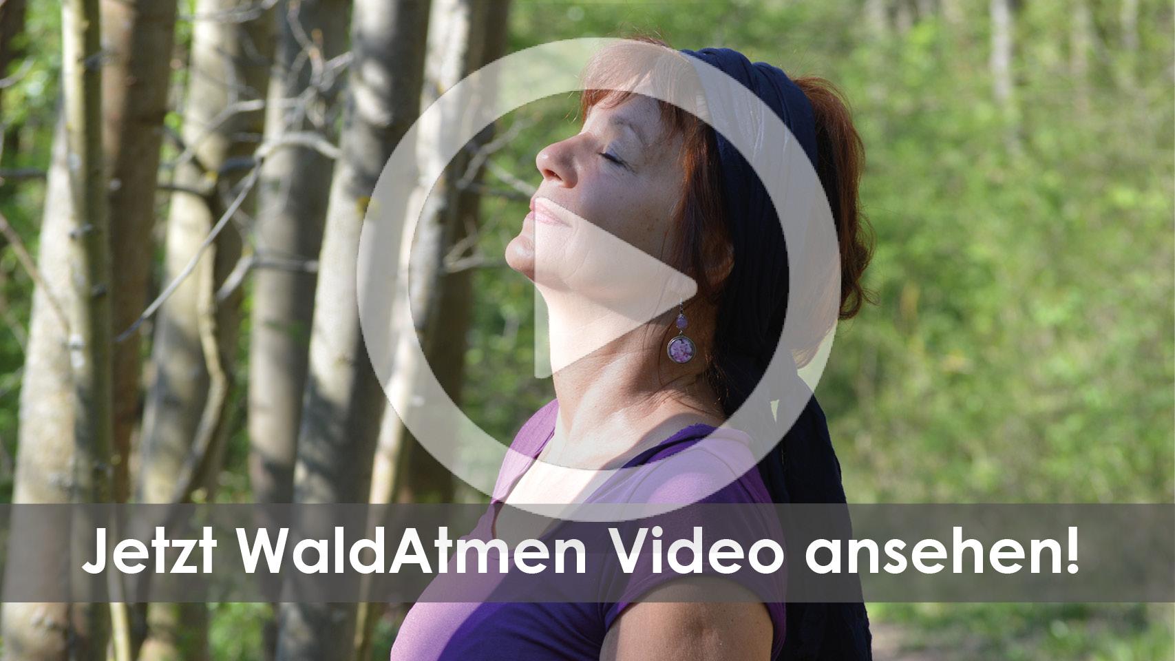 Waldatmen Video